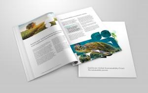 Rathbones GSF Brochure